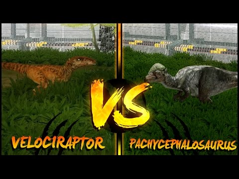 Dinosaur Battles - Velociraptor Vs Pachycephalosaurus   Jurassic Park : Operation Genesis