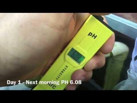 How To Raise Water PH Naturally - Aquaponics Hydroponics