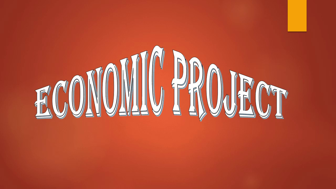 microeconomics project report