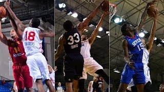 Best Blocks of 2013-14 NBA D-League season