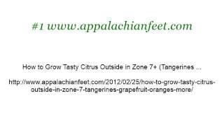 How-To Grow Truffles In North Carolina