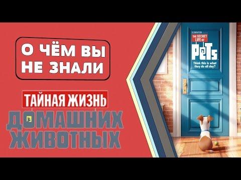 Фильм Защитники (2017) смотреть онлайн бесплатно HD 720 на