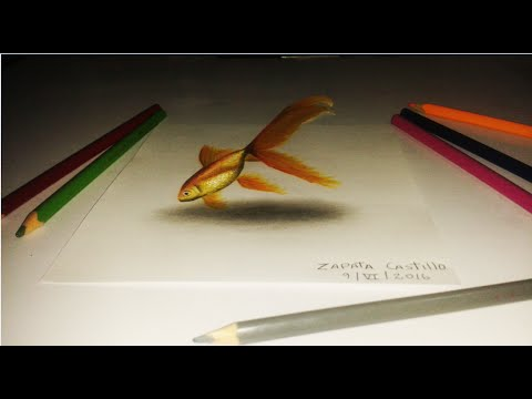 Dibujo anamorfico de un Pez Dorado en 3D  An anamorphic drawing