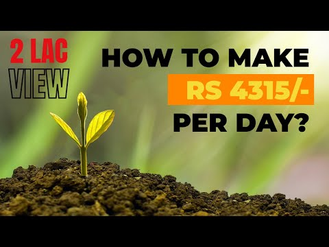 How to earn Rs 4315 per day from the stock market?