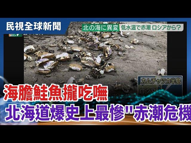 【民視全球新聞】海膽鮭魚攏吃嘸 北海道爆史上最慘