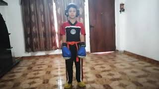Ilich Aranguren/ Ronda 3/ Virtual Figth/ Point Fight/Sombra