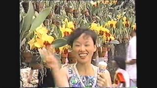 #90년대방콕 #패키지투어