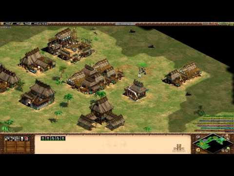 Age of Empires II HD With Friends vs AI's