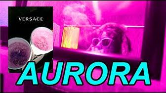 """1.5 """"AURORA"""" - Hammilton BakerR"""