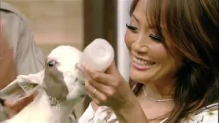 Ryan & Carrie Ann Inaba Meet Baby Animals