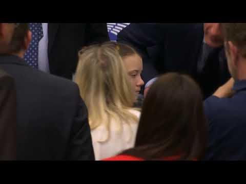 Greta Thunberg in the European Parliament committee on environment