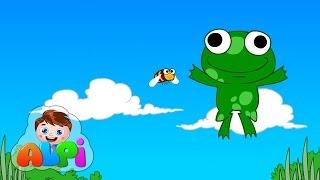 Küçük kurbağa şarkı sözleri