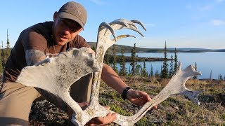 Left Alone To Survive On An  Sland In The NorthWest Territories Remote Canada