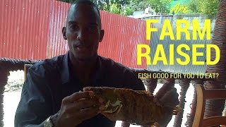 Farm Raised Fish: Is Eating Farm Raised Catfish, Salmon & Tilapia Healthy?