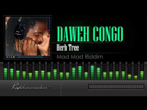 Daweh Congo - Herb Tree (Mad Mad Riddim)