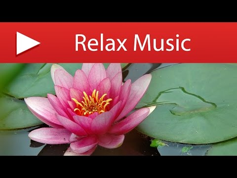 3 HOURS Positive Zen Music for Positive Thinking and Vital Energy