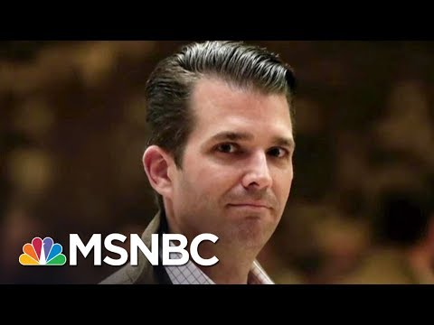 Amidst Hurricane, Donald Trump Jr. Puts Admin In Its Own Crisis | The Last Word | MSNBC