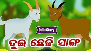 Dui Chheli Sanga ଦୁଇ ଛେଳି ସାଙ୍ଗ - Odia Moral Story For Kids | Hooke Hoo Tv