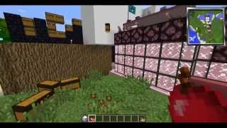 Minecraft: Luggage, Rosesters and Hamster Talk