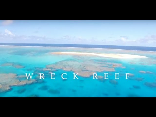 FISHING Wreck Reef with Big Cat Reality in the Coral Sea.