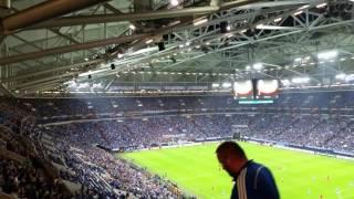 FC Schalke 04 - FC Salzburg 3:1 / Alle Bullen sind Schweine Teil 1