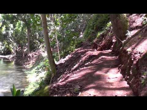 Wailua River Kayak Secret Falls, Kauai Hawaii