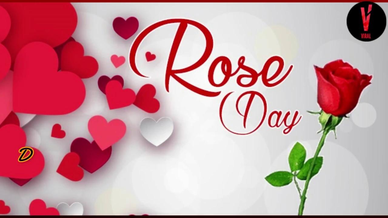Valentine day love whatsapp status video
