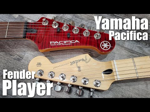 Yamaha Pacifica or Fender Stratocaster?  Which is the Best MidRange Guitar?