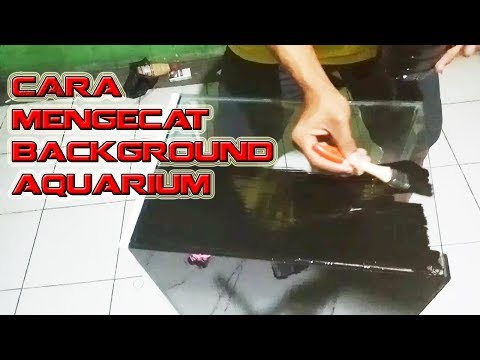 Cara Mengecat Background Aquarium