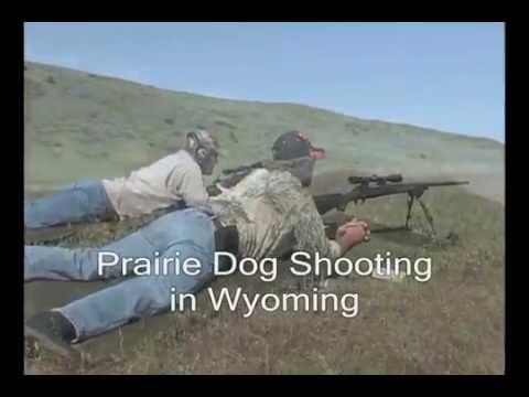 Wyoming Prairie Dog Hunting Guides, Outfitters and Lodges