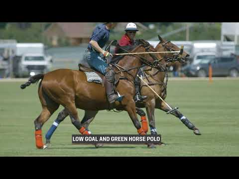 Flying H Polo