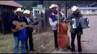 Músicos de El Mezquital, en Durango