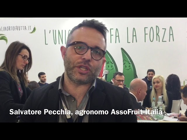 Resoconto Berlino Fruit Logistica 2018