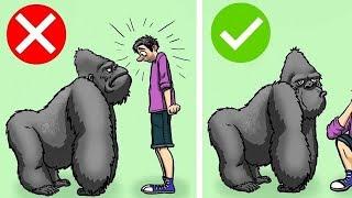 Vahşi Hayvanlardan Kaçmanıza Yardımcı Olacak 10 Numara. Tanışmamız Gerekebilir!
