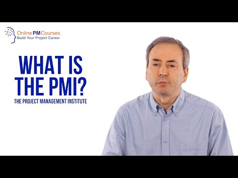 Project Management in Under 5: What is the PMI?