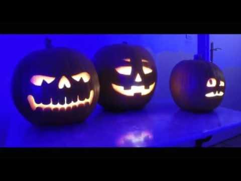 Halloween Pumpkins Singing Jacko Lantern