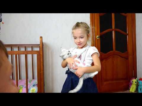 КОТЕНОК БАНТИК ИГРАЕТ В ЗАМКЕ смешные коты и котята 2019 NEW Family