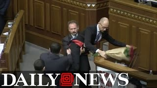 Ukraine politicians brawl on parliament floor