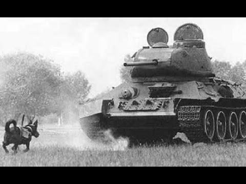 Những Vũ Khí Kỳ Dị Trong Thế Chiến 2 [Part 2]