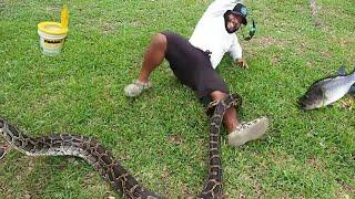 dangerous-snake-attacks-while-bass-fishing-help-identify