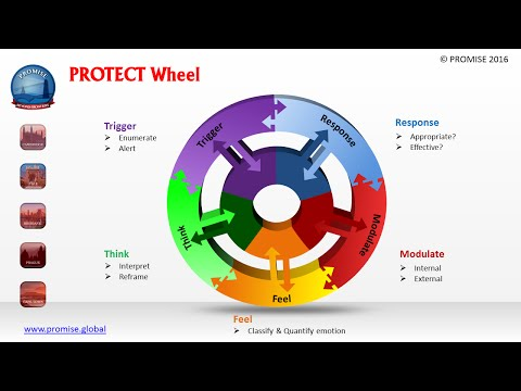 PROTECT: PROactive deTECTion: PROMISE Safety Framework for Risk Management in Mental Health