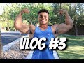 8 weeks out vlog 3 mp3