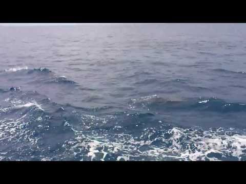 sóng biển!