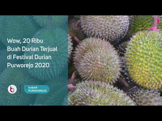 Wow, 20 Ribu Buah Durian Terjual di Festival Durian Purworejo 2020