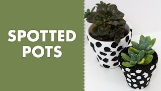 Painted Spotted Dot Terra Cotta Clay Pots