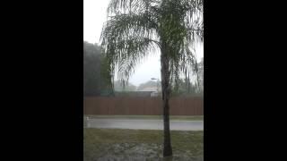 Sarasota Rain David Barkasy