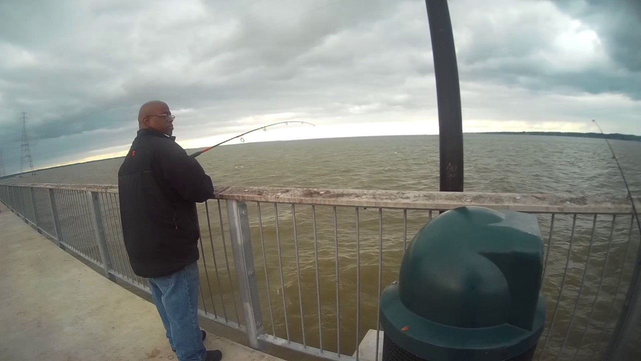Croaker fishing james river pier must see youtube for James river fishing report