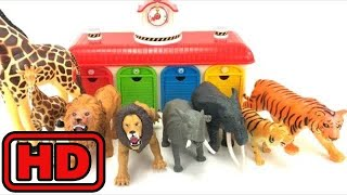 Kid -Kids -Learn Names Of ZOO Animals/Sea Animals/Learn Colors/Toy surprises/Kids Educational Fun M