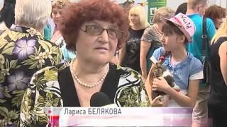 Выставка-раздача бездомных животных прошла в Ярославле