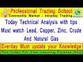 Commodity Market : Today Technical Analysis with tips in lead, copper, NG - Jan 8
